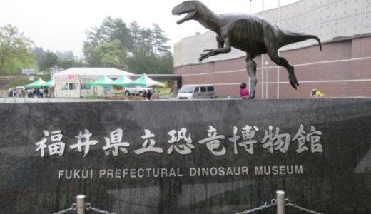 福井県立恐竜博物館のゴールデンウィークはどれくらい混雑しているの?