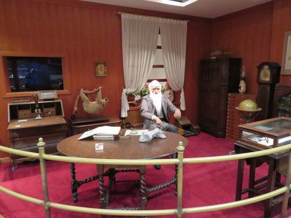 群馬県立自然史博物館 ダーウィンの部屋