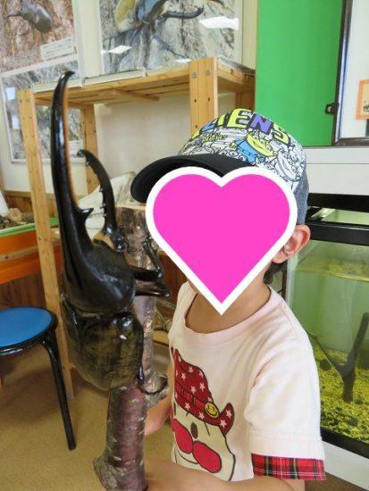 長野県佐久市 昆虫体験学習館に行ってきた