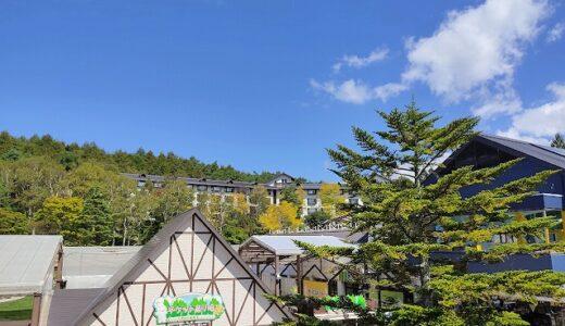 【白樺リゾート池の平ホテル】ブログ宿泊記・バイキングが豪華だぞ
